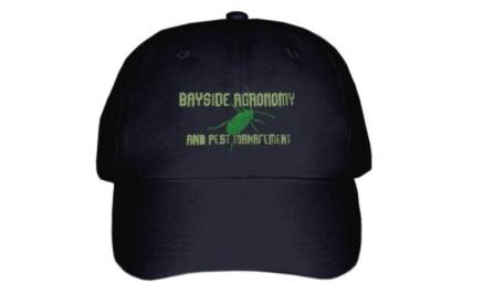 black cap2