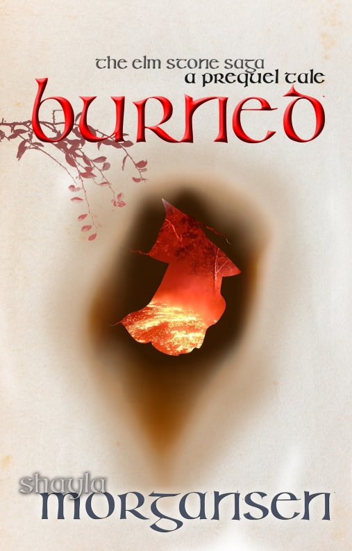 BURNED COVER1